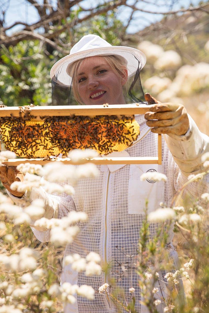 About - Girl Next Door Honey